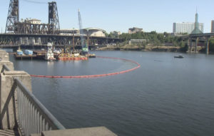 Willamette River Cleanup